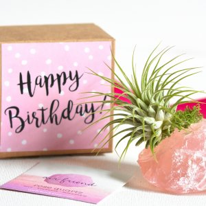 air_friend_rose_quartz_happy_birthday_card_2