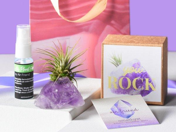 air_friend_amethyst_you_rock_crystal_air_plant_garden