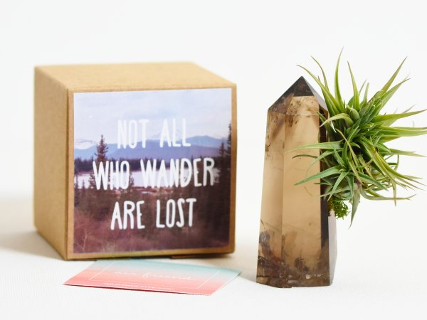Air Friend Not All Who Wander Are Lost Air Planter Gift