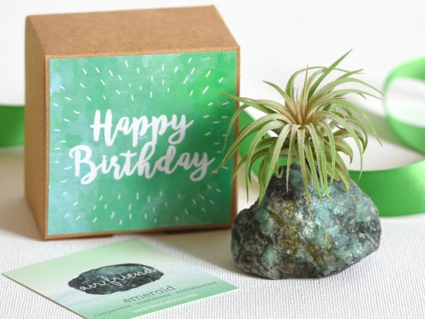 air_friend_emerald_happy_birthday_may_birthstone_birthday_gift_air_planter_air_Friend_4f