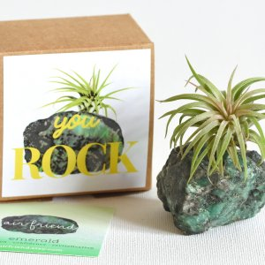 air_friend_emerald_you_rock_may_birthstone_birthday_gift_air_planter_air_Friend_1