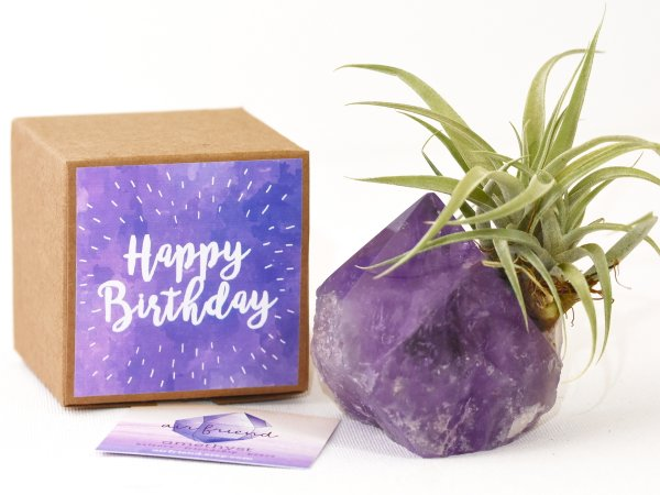 air_friend_happy_birthday_amethyst_bolivia_1f