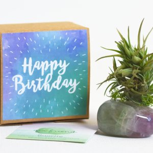 air_friend_happy_birthday_fluorite_1