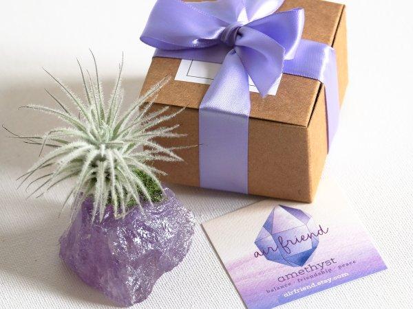 air_friend_jumbo_amethyst_fuzzy_air_planter_gift