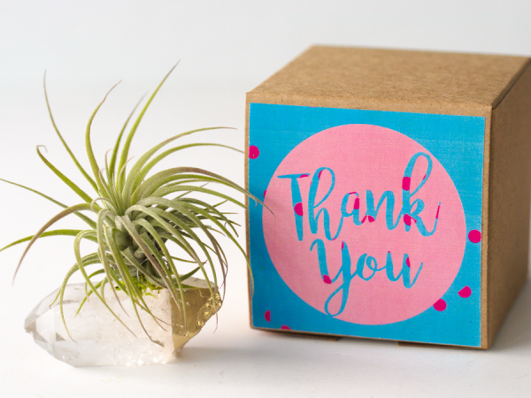 Say thank you with air friend crystal quartz air planter