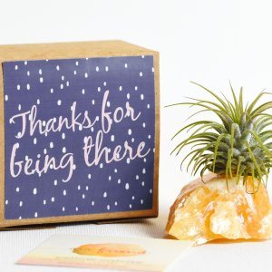 Say thanks for being there with air friend yellow calcite air planter gift