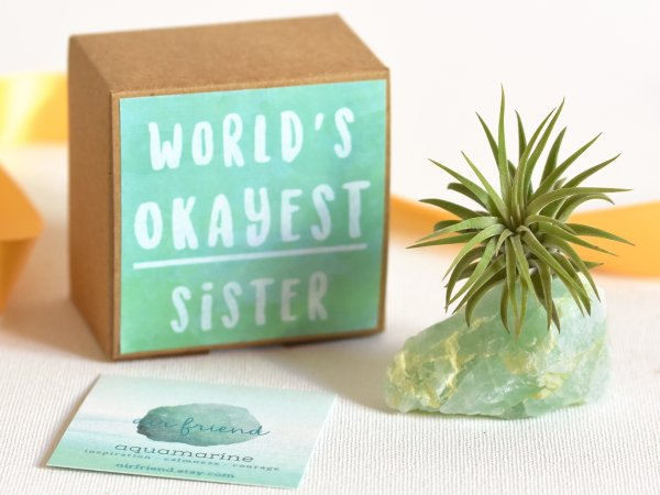 air_friend_worlds_okayest_sister_aquamarine_air_planter_air_friend_1