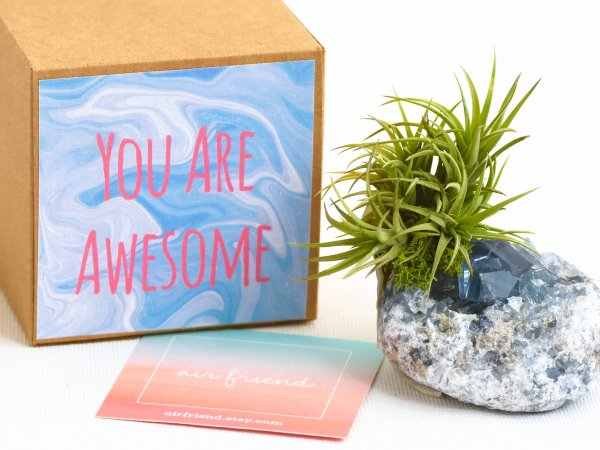 air_friend_you_are_awesome_celestite